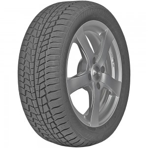 Gislaved EURO*FROST 6 215/70R16 100H 3PMSF FR